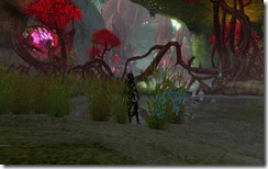 gw2-briarthorn-barrier-guild-trek-3