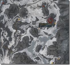 gw2-cave-spider-nidus-guild-trek-3