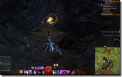 gw2-heartwoods-honey-cache-guild-trek-2