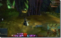 gw2-lychcroft-wardenship-guild-trek-2
