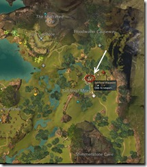 gw2-saltflood-altar-guild-trek-4