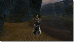 gw2-skalefound-cove-guild-trek-3