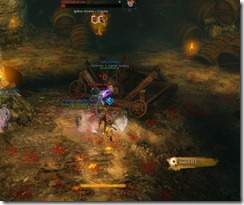 gw2-langmar-estate-guild-puzzle-13