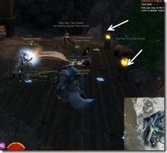 gw2-angvar's-trove-guild-puzzle-8