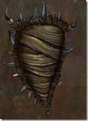 gw2-bandit-ward-shield