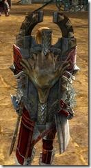 gw2-braham's-shield-skin-2