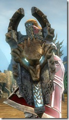 gw2-braham's-shield-skin