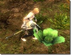 gw2-consortium-harvesting-sickle-3