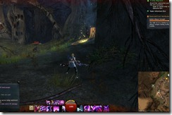 gw2-gallow-canyons-guild-trek-3