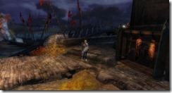 gw2-skalecatch-bucher-shop-guild-trek-4
