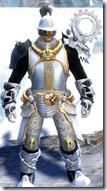 gw2-aetherblade-heavy-armor-male-4