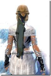 gw2-elegant-guild-back-banner