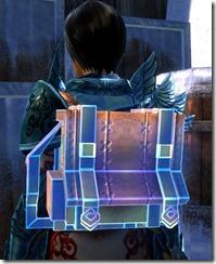 gw2-super-backpack-2