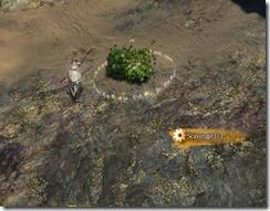 gw2-southsun-survival-guide-6