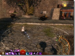 gw2-speedy-reader-achievement-the-founding-10