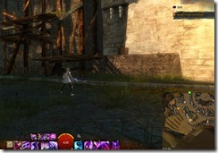 gw2-speedy-reader-achievement-the-founding-11