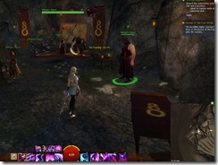 gw2-speedy-reader-achievement-the-founding-7b