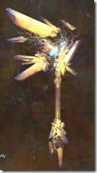 gw2-zenith-reaver-axe