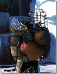 gw2-zephyr-rucksack-2