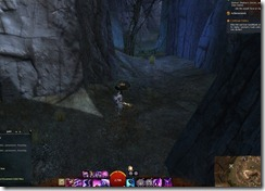 gw2-a-waddle-to-remember-brisban-wildlands-4b