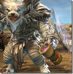 gw2-poyaqui's-noggin-focus-champion-weapon-skins