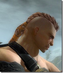 gw2-norn-male-hairstyle-1
