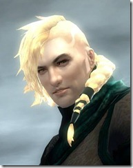 gw2-norn-male-hairstyle-2