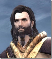 gw2-norn-male-hairstyle-3