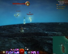 gw2-toxic-krait-historian-achievement-guide-bloodtide-coast-2