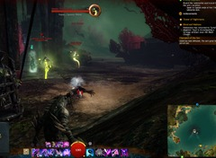 gw2-toxic-krait-historian-achievement-guide-caledon-forest-4