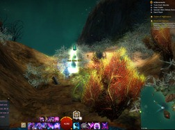 gw2-toxic-krait-historian-achievement-guide-mount-maelstrom-5