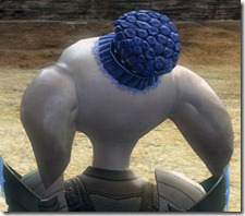 gw2-twilight-assault-hairstyles-asura-male-2-3