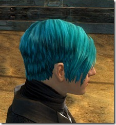 gw2-twilight-assault-hairstyles-human-male-1-2