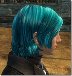 gw2-twilight-assault-hairstyles-human-male-2-2