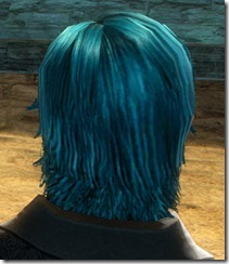 gw2-twilight-assault-hairstyles-human-male-2-3
