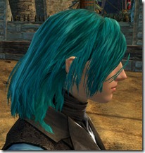 gw2-twilight-assault-hairstyles-human-male-3-3