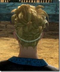 gw2-twilight-assault-hairstyles-norn-female-3-3