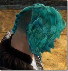 gw2-twilight-assault-hairstyles-norn-male-1-2