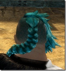 gw2-twilight-assault-hairstyles-norn-male-1-3
