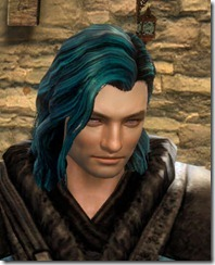 gw2-twilight-assault-hairstyles-norn-male-3-1