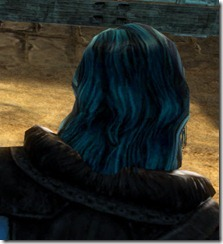 gw2-twilight-assault-hairstyles-norn-male-3-3