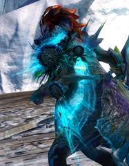 gw2-dreamthistle-shield-skin-5