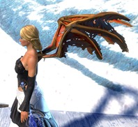 gw2-wings-of-the-sunless-2