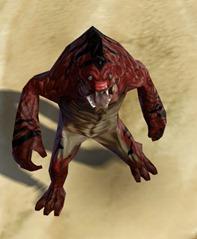 swtor-blood-drouk-pets