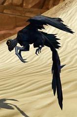 swtor-ebon-wing-flutterplume-pets-2