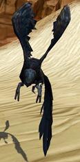 swtor-ebon-wing-flutterplume-pets