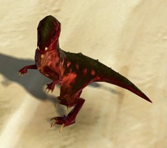 swtor-green-back-raptor-pet