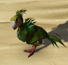 swtor-orokeet-pet-2