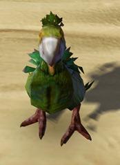 swtor-orokeet-pet