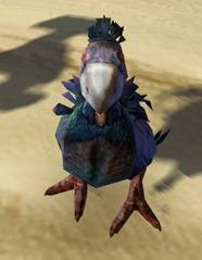 swtor-orosquab-pet